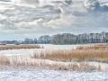 vinterlandskab